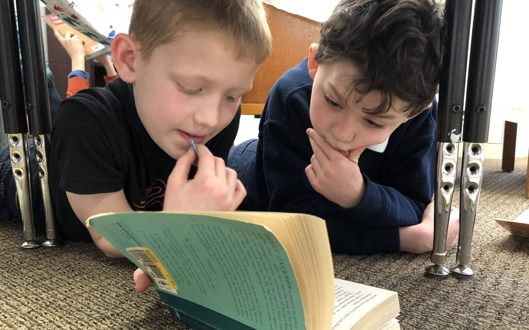Summer Reading List from Whitefield Academy